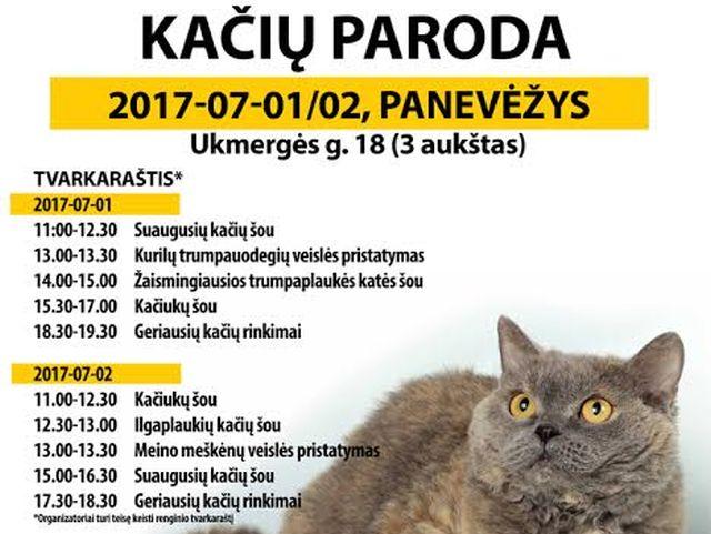 Tarptautinė kačių paroda Panevėžyje